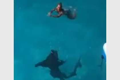 Акула вплотную подплыла к ничего не подозревающей имениннице и попала на видео