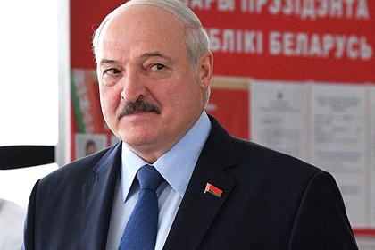В Чехии рассказали о рычагах давления на Лукашенко