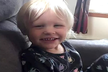 Трехлетняя девочка провела сутки в глухом лесу и выжила