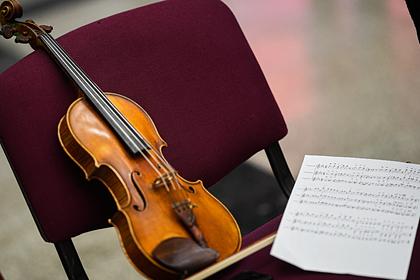 Маткапитал предложили тратить на российские музыкальные инструменты