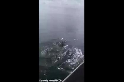 Огромная акула-молот вырвала улов из рук рыбака и попала на видео