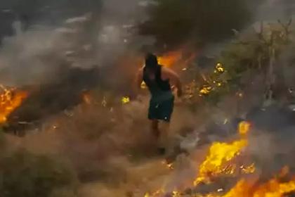 Мужчина тушил лесной пожар ногами и попал на видео