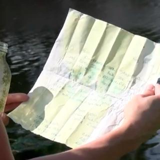Вводная картника