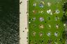"""<a href=""""https://www.dezeen.com/awards/2020/longlists/domino-park/"""" target=""""_blank"""">Domino Park</a>, расположенный на набережной Ист-Ривер в Нью-Йорке, помогает горожанам соблюдать социальную дистанцию — газон размечен белыми кругами. С момента открытия парк посетили почти 2,5 миллиона человек. Раньше это была закрытая территория сахарной фабрики, которую реанимировала команда James Corner Field Operations. При этом отдельные объекты завода (рельсы, сиропные баки, конвейеры) отремонтировали, покрасили и оставили в качестве украшения."""