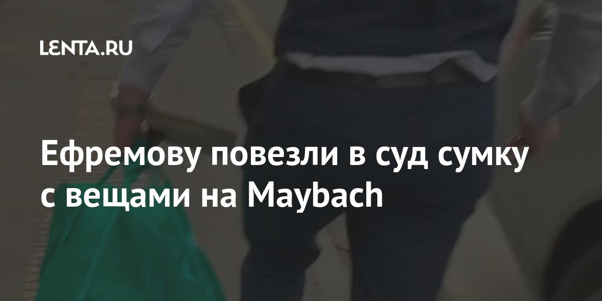 Ефремову повезли в суд сумку с вещами на Maybach
