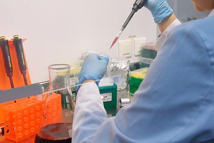 Роспотребнадзор оценил риск проникновения в Россию чумы из Монголии