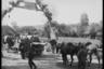 Немецкие войска входят в украинскую деревню. Самодельная деревянная арка украшена нацистской свастикой и приветственными плакатами «Heil Hitler» («Да здравствует Гитлер») и «Unser Fuhrer ist mit uns» («Наш фюрер с нами»). Июль 1941 года.