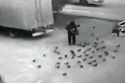Камеры сняли смертельный наезд грузовика на кормившего голубей россиянина