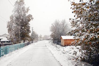 В российских регионах выпал первый снег
