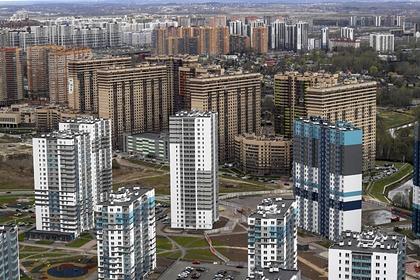 Иностранка удивилась вылезающим из канализации комарам в Санкт-Петербурге