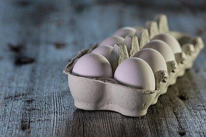 Найдена альтернатива куриным яйцам в рационе