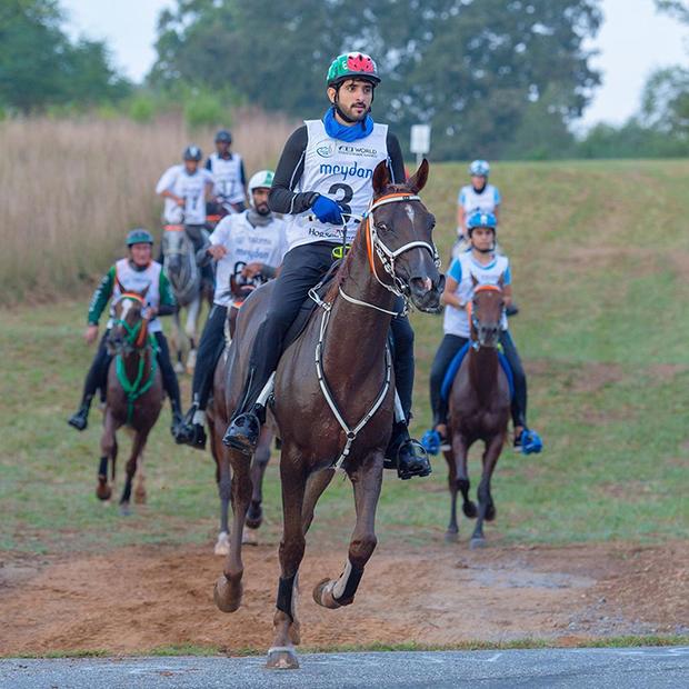 Кронпринц Дубая Хамдан бин Мохаммед бин Рашид аль-Мактум на конном пробеге Endurance Cup в 2020 году