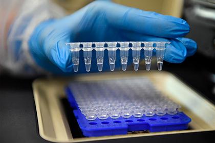 Белгородские ученые займутся исследованиями в области фармакологии