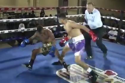 Боксер нокаутировал соперника «страшным» ударом