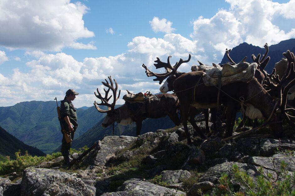 Экспедиция по обследованию территории национального парка «Токинско-Становой»