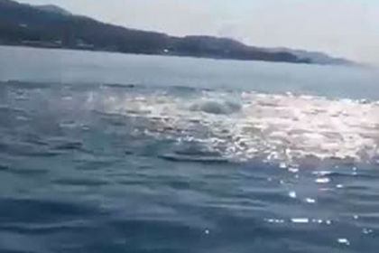 Загадочное явление у берегов Сочи стало предметом споров в сети