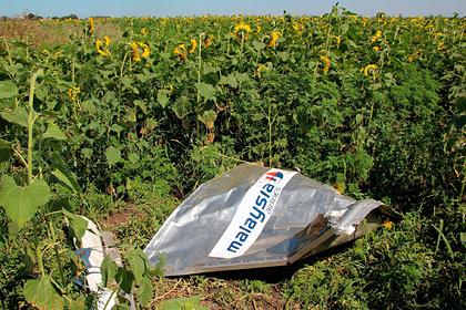 Подозреваемый по делу MH17 россиянин захотел обратиться к суду