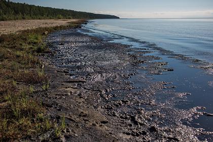 Очистка Байкала от спирогиры войдет в нацпроект «Экология»