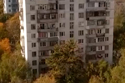 Москвич в лифчике выбросил в окно кошку и велосипед, ранил женщину и убил себя