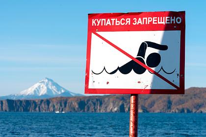 Описаны повреждения полигона ядохимикатов возле загрязненного пляжа на Камчатке