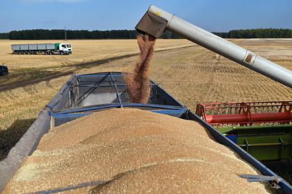 В России соберут второй в новейшей истории урожай зерна