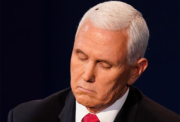 Пенс с мухой на голове во время дебатов