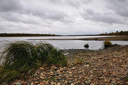 Возле российского месторождения нефти обнаружили радужную пленку на реке