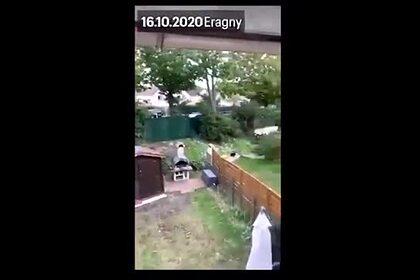 https://icdn.lenta.ru/images/2020/10/18/08/20201018080947681/pic_66d8bfb5f8bbb8405df5346b8902b55d.jpg