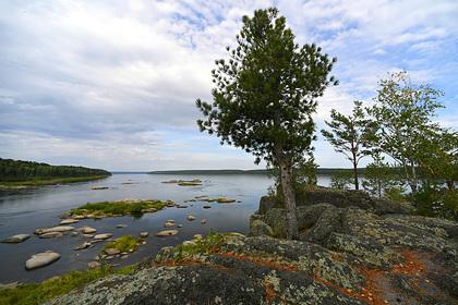 Золотодобытчики загрязнили сотни километров рек в Сибири