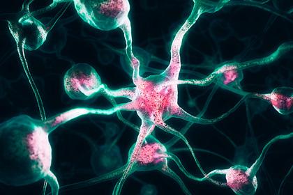 Предложена новая теория о появлении сознания человека