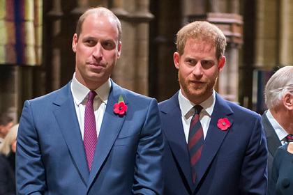 Принц Уильям считал Гарри обаятельным мерзавцем и завидовал ему