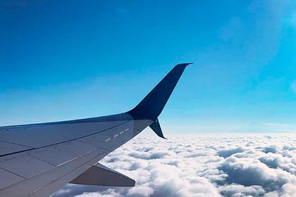 Российский пилот объяснил причины пугающего пассажиров маневра