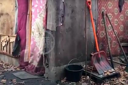 Власти сообщили о судьбе жившего в подмосковном лесу с бездомными мальчика