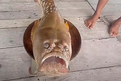Рыба с «грустным человеческим лицом» напугала жителей тайской деревни