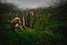 Этот снимок получил название «Утопия». По словам фотографа Риккардо Марчеджани (Riccardo Marchegiani), все дело в том, что в современном мире почти все вокруг создано и адаптировано для человека. Только вот на самом деле мир совершенно не такой. Природа на снимке во всей своей первозданности, в красоте своих силуэтов и цветов, выглядит как место, над которым не властны ни человек, ни время.