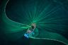 Вьетнамские рыбаки двигают сеть под поверхностью воды. Многие из местных останавливают судна на побережье провинции Фуйен, чтобы поймать анчоусов. Лишь малая часть будет продана свежей, большинство рыб засушат или засолят. Засоленные анчоусы — главный ингредиент для традиционного соуса, без которого невозможно представить вьетнамскую кухню.