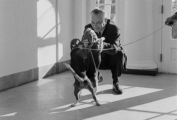 Президент США Линдон Джонсон, декабрь 1963 года