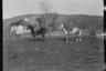 Немецкие офицеры на лошадях. Западный фронт, 1916 год.