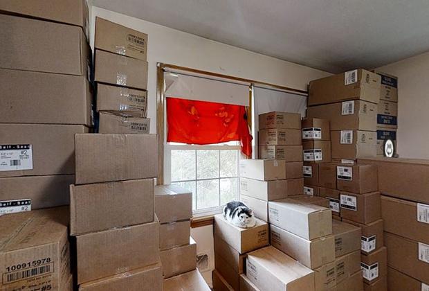 Хозяйский кот Локо лежит на коробках в одной из спален