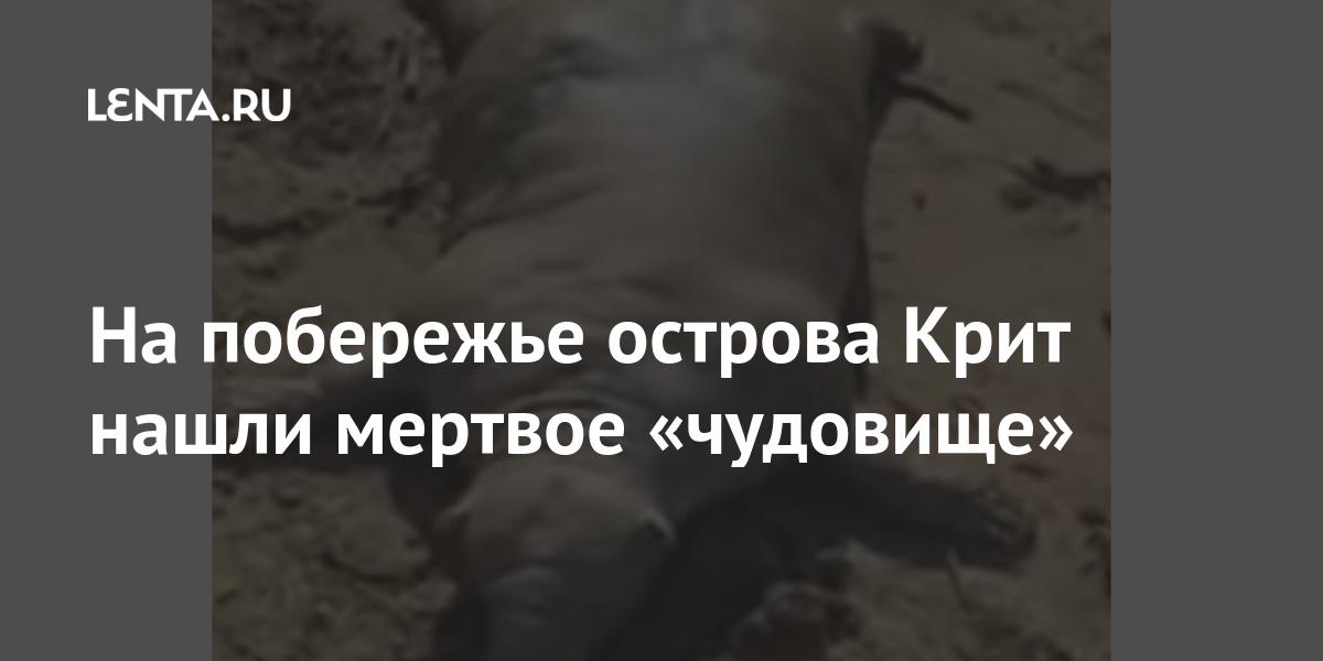 На побережье острова Крит нашли мертвое «чудовище»