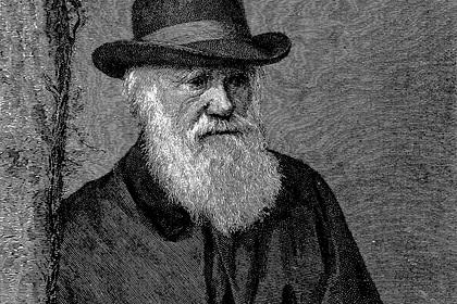 Пропажу рукописей Чарльза Дарвина заметили спустя 20 лет