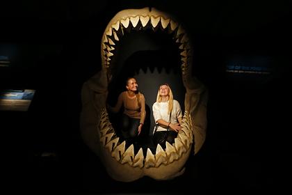 Объяснено вымирание крупнейших чудовищ в истории Земли