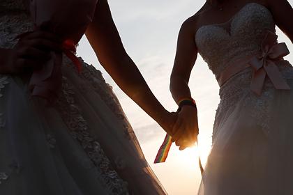 Госдума приняла законопроект об «особом» запрете на однополые браки в России