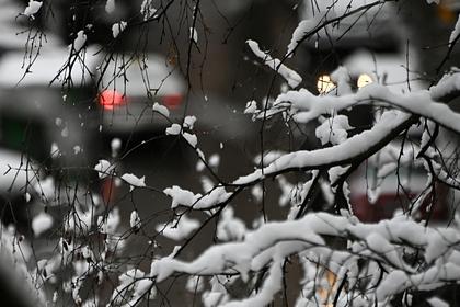 Гидрометцентр дал прогноз на декабрь
