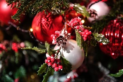 Оценена стоимость покупки и украшения новогодней елки