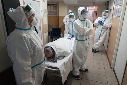 Россиянам посоветовали прятаться от коронавируса в Антарктиде