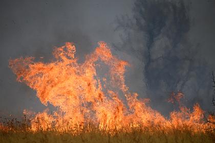 В МЧС назвали причину роста природных катастроф в России