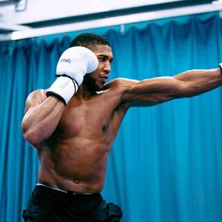 Джошуа высказался о возможном бое с Усиком: Бокс и ММА