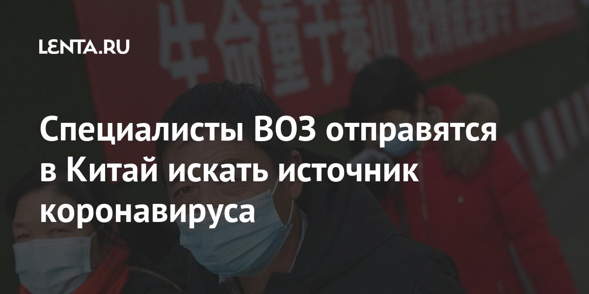 Специалисты ВОЗ отправятся в Китай искать источник коронавируса