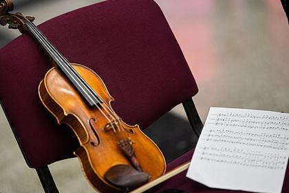Ростовская область закупила музыкальные инструменты для 20 учреждений